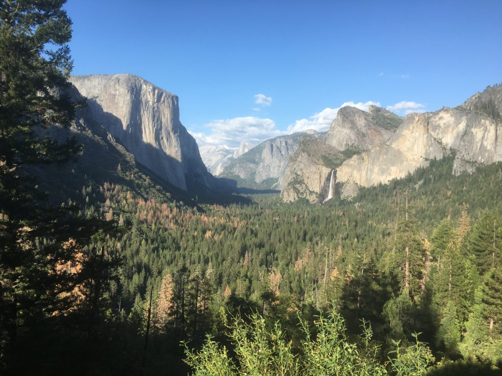 Panoramablick - Yosemite National Park