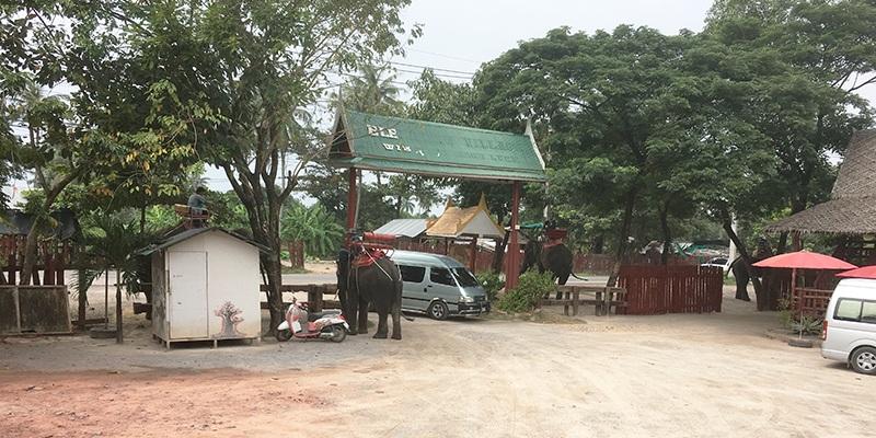 Elefantenfarm in Thailand