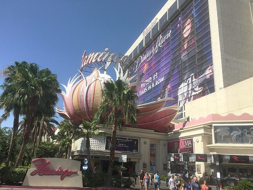 Flamingo Hotel & Casino Las Vegas