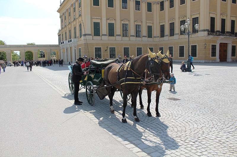 Pferdekutsche - Schloß Schönbrunn (Wien)