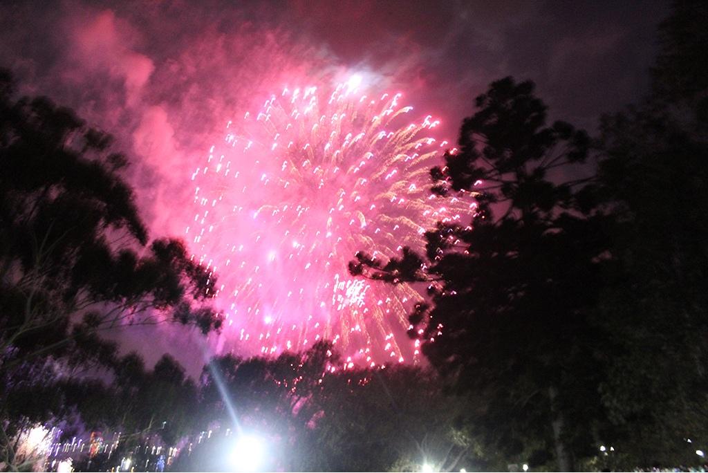 Feuerwerk in Sydney - Silvester