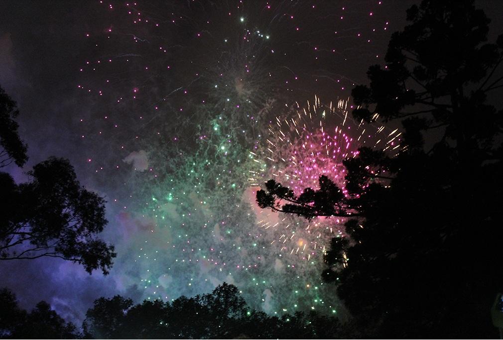 Kids Firework in Sydney