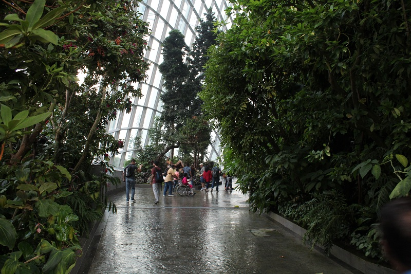 Cloud Forest Dome