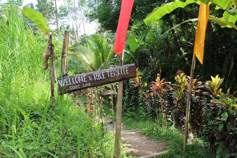 Eingang zu den Reisfeldern in Ubud