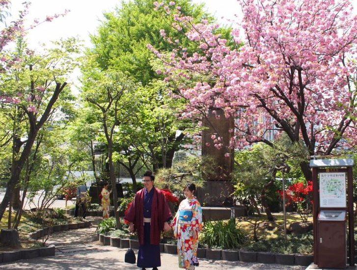 Tokio - Kirschblütenfest