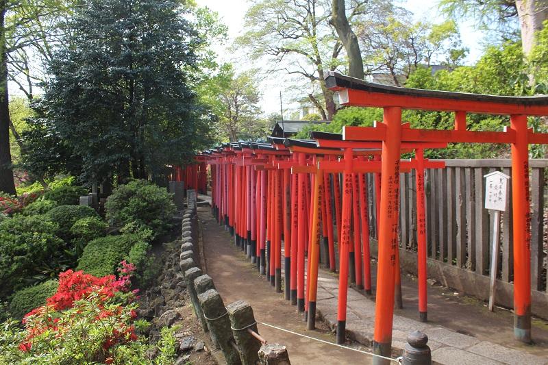 Torii im Otome-Inari Shrine