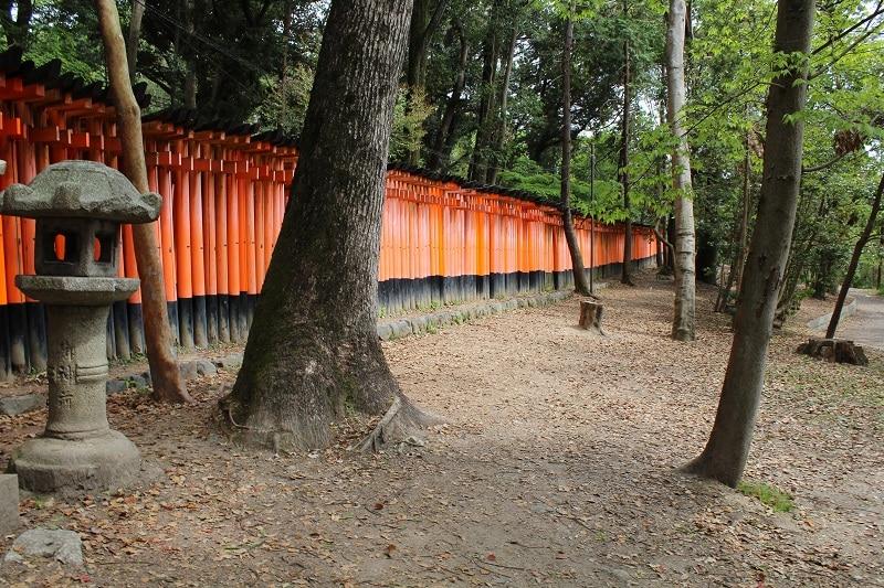 Torri Kyoto